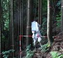 森林整備全体計画